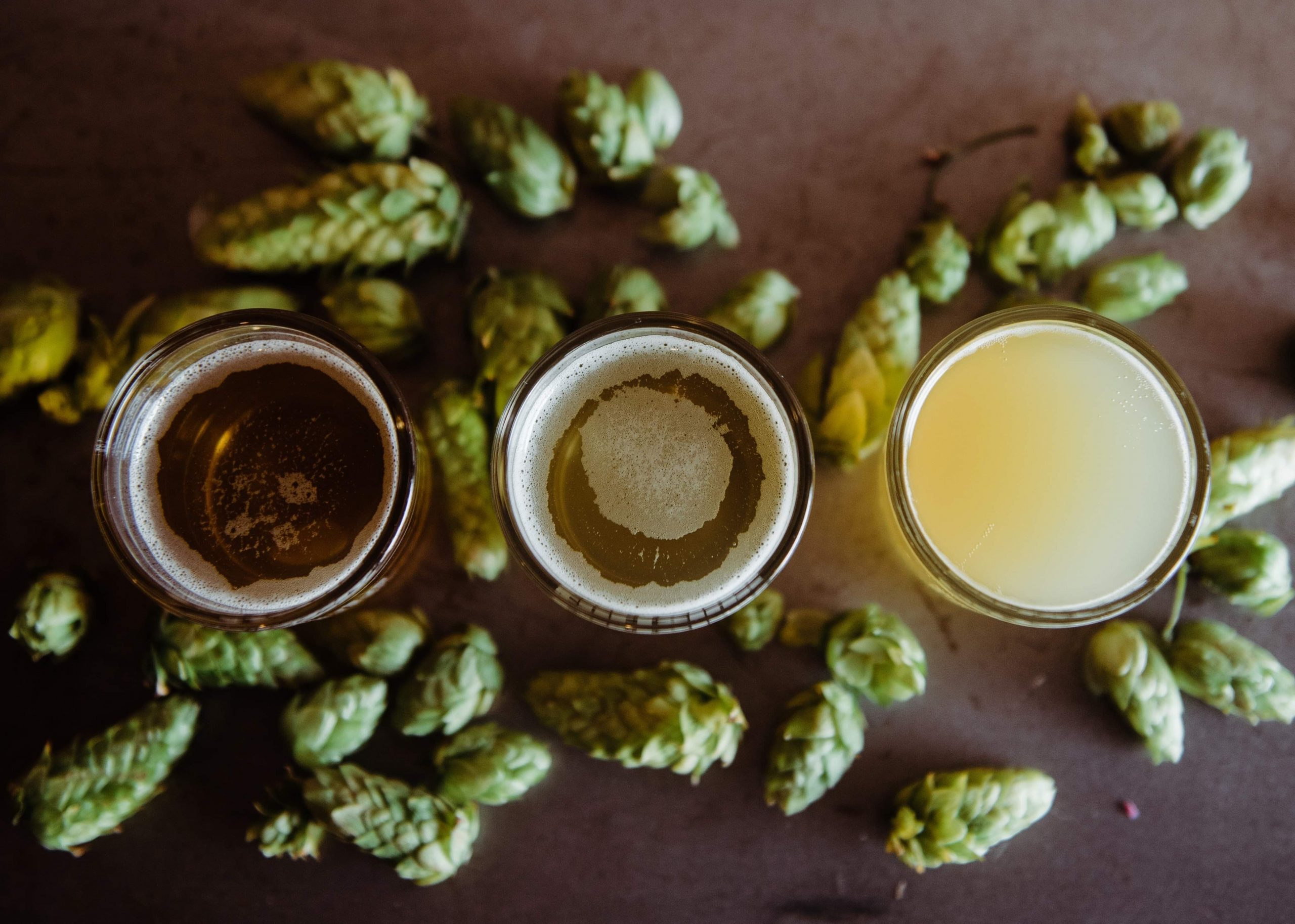 brewing browser, the homebrewing resource for making beer at home