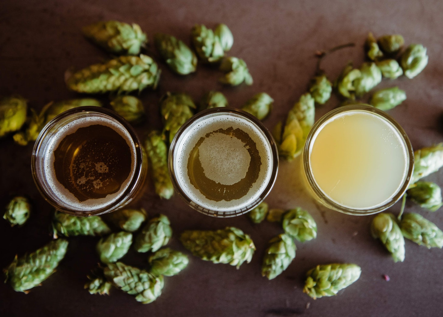 beers surrounded by hop flower cones used for extraction